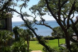 large ocean view condo pet friendly vacation rental in sea island, st simons island dog friendly rentals